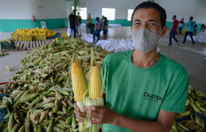 Prefeitura do Ipojuca realiza distribuição de kits de agricultura familiar para alunos da rede municipal